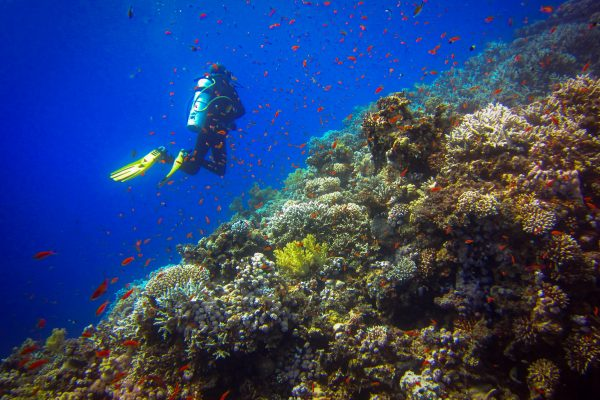 Scuba 2000 - diving at the Blue Hole in Dahab, Egypt